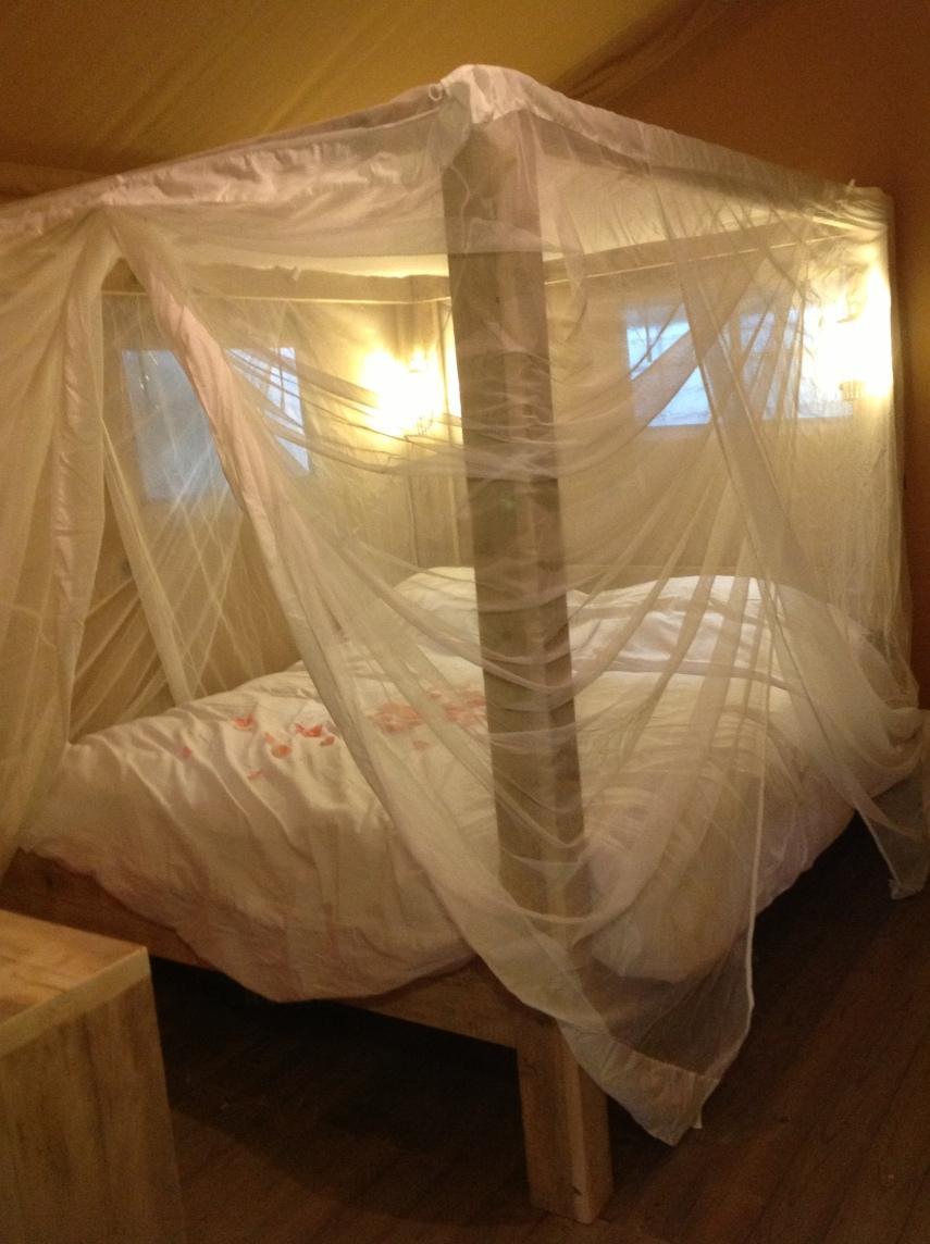 Safari Tent Deluxe interior